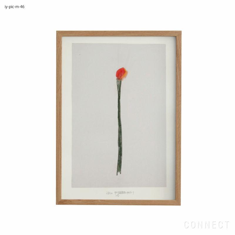 山口一郎 / Mサイズ / 花 / iy-pic-m-46