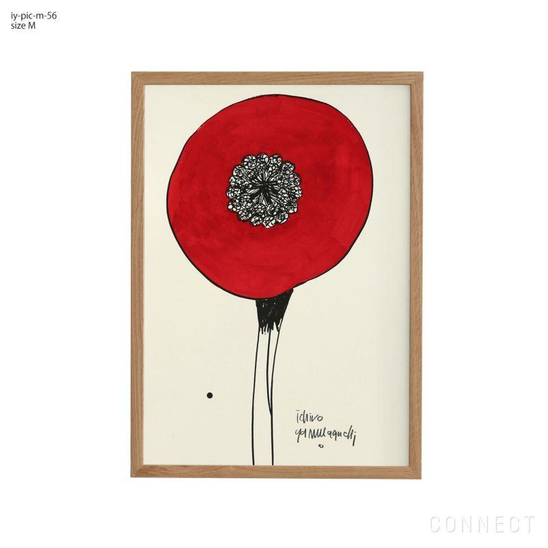 山口一郎 / Mサイズ / 花 / iy-pic-m-56